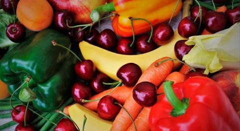 AIMPLAS participa proyecto que estudia toxicidad materiales contacto alimentos