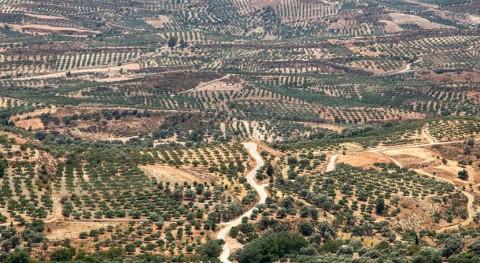 Multa Grecia desprotección aguas frente contaminación nitratos