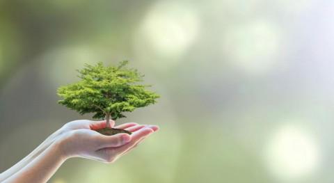 Ecovidrio se suma Hora Planeta 2018