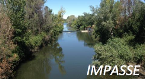 ¿Cómo evaluar impacto microplásticos agro-ecosistemas y ecosistemas fluviales?