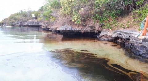 derrame petrolero Isla Mauricio cuestiona esfuerzos salvar arrecifes coral