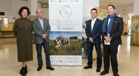 ULL lidera proyecto Macaronesia producción biogás partir residuos orgánicos