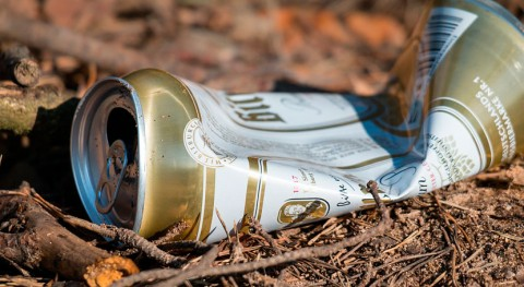 hermandades rocieras deben pagar fianza basura, Ecologistas