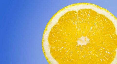 limoneno podría ser clave preparar nuevos bioplásticos bisfenol