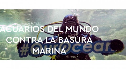 acuarios aúnan fuerzas luchar basura marina