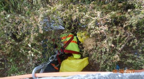 Retirada más tonelada basura río Barbaña