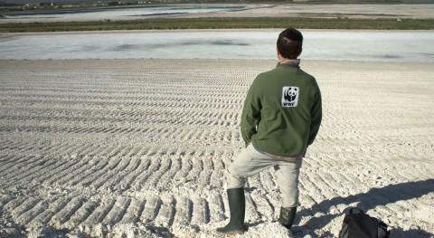 Revés judicial Fertiberia: Fianza 65 millones euros limpiar fosfoyesos Huelva