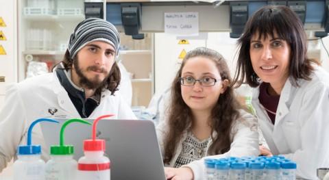 estudio UPV demuestra que microplásticos afectan supervivencia invertebrados