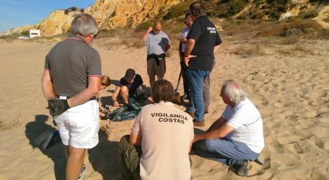 MITECO trabaja sector turístico actuar frente basuras marinas playas
