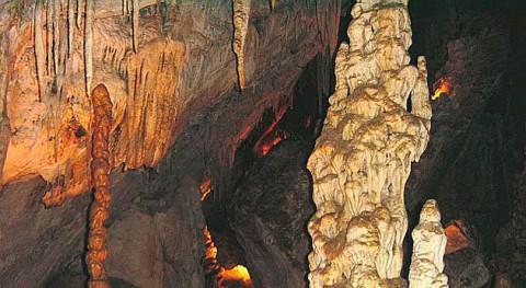 Recogidos más 400 kilos restos obras y material Cueva Murciélagos