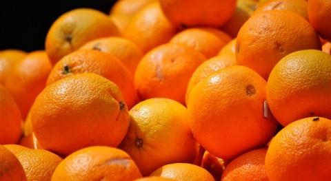 nuevo material limpiar aguas contaminadas da segunda vida cáscaras frutas