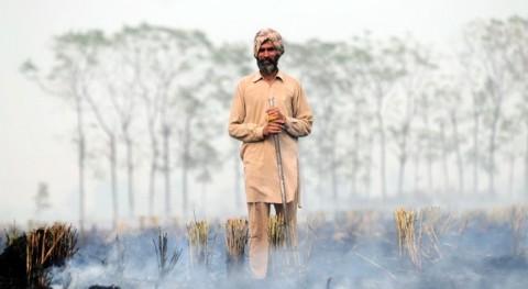 impacto quemas agrícolas: problema calidad aire