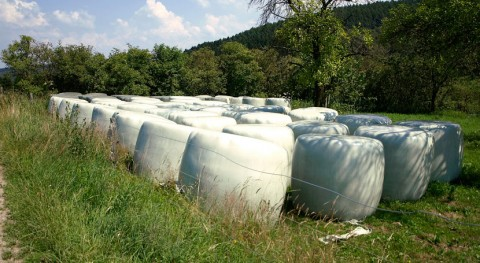 Palencia apuesta recogida puerta puerta plásticos uso ganadero