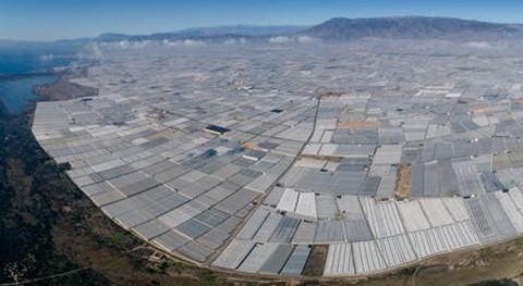 Residuos agricultura plástico