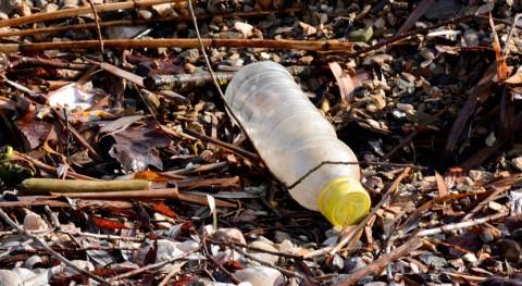 Valencia, escenario proyecto mejora residuos envases plástico