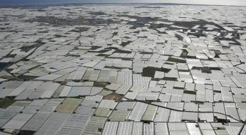 Junta Andalucía y Ejido estudian alternativas viables gestión residuos vegetales