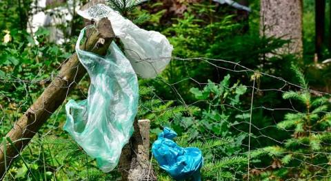 esfuerzos África eliminar plásticos desechables