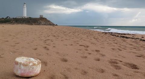 Investigadores UCA constatan que colillas son residuos más abundantes playas