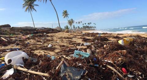 Día Internacional Reciclaje 2019: mundo plásticos