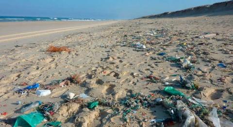 Comienza segunda edición campaña '1m2 playas y mares'