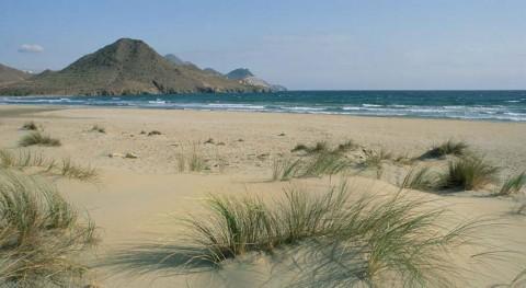 """""""Playas Limpias"""" impartirá 400 talleres educación medioambiental playas españolas"""