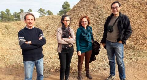 Ivace respalda millón euros 82 proyectos biomasa Alicante