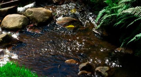 retirada basura cambia cara Quebrada Pasucucho Ecuador