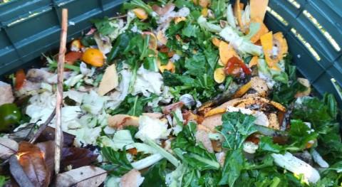 Monforte estrena 25 compostadores reforzar reciclaje materia orgánica