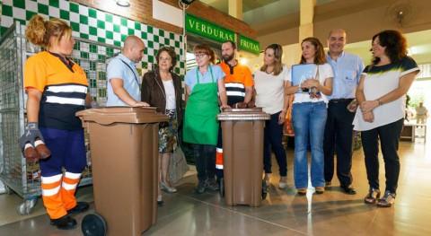Sevilla implanta recogida selectiva residuos orgánicos mercados