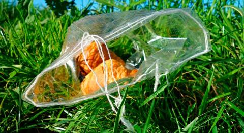 marcha proyecto piloto gestionar residuos plásticos agrarios