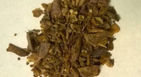 ¿Cómo producir biocombustible partir residuos industria agroalimentaria?
