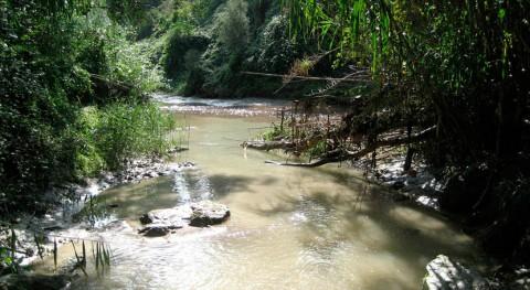 niveles retardantes llama ríos europeos exceden límites legales