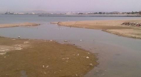 barranco Nano, lleno vegetación arrancada río Oro, basura y neumáticos