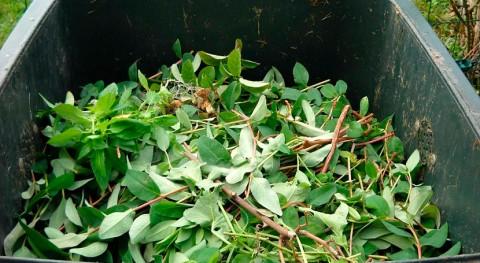 busca solución residuos agrarios