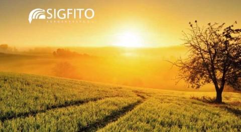 SIGFITO presenta memoria anual ejercicio 2015