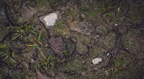 ¿Cómo pueden compost y residuos reducir contaminación suelos?