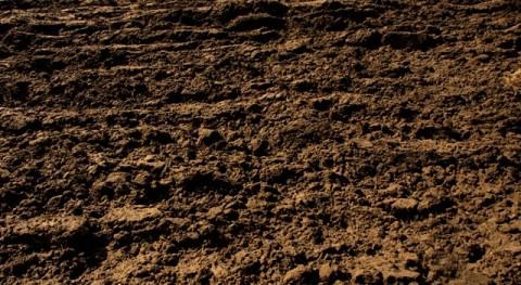 IMIDRA Y ACCIONA ponen marcha proyecto pionero investigación descontaminación suelos