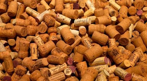 Biomasa, fuente limpia hidrógeno