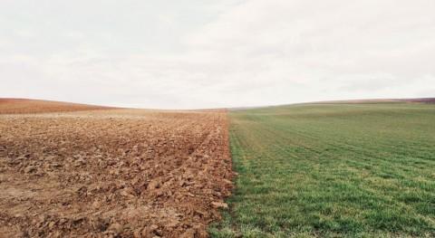 contaminación suelo representa amenaza inocuidad y seguridad alimentaria