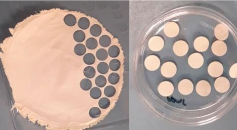 investigación crea tirita restos lana desechados que regenera células piel