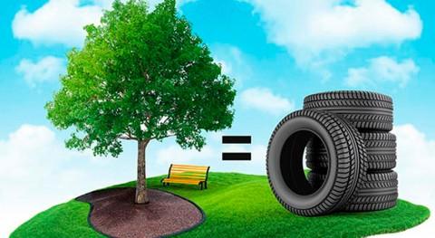 neumáticos usados, útiles fabricar recubrimientos ecológicos jardinería