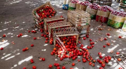 desperdicio alimentos como causa mala nutrición