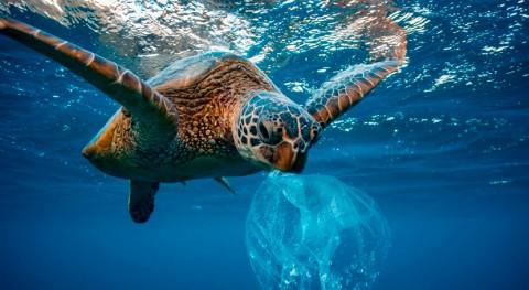 oceáno Atlántico tiene más microplásticos que que se creía