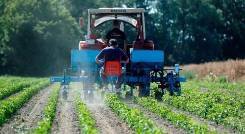 Fertilizantes medioambiente: soluciones y desafíos proteger nuestro planeta