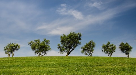 17 proyectos acelerar transición industria vasca economía circular