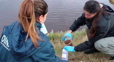 Uruguay avanza gestión residuos sólidos industriales