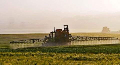 ¿Qué riesgos conlleva uso indiscriminado pesticidas?
