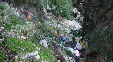 20 voluntarios participan jornada limpieza mirador s'Entreforc, Mallorca