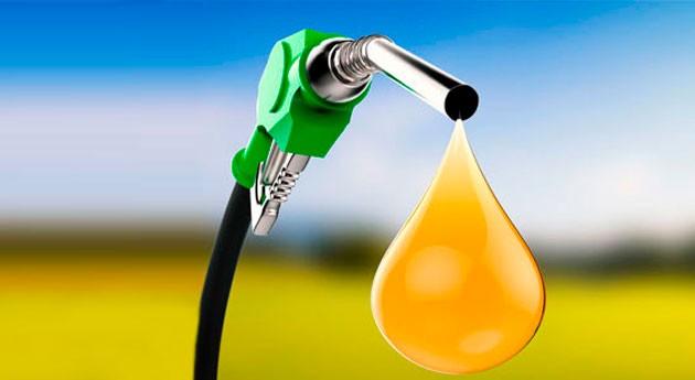generación biocombustibles: paliativo económico y ecológico México