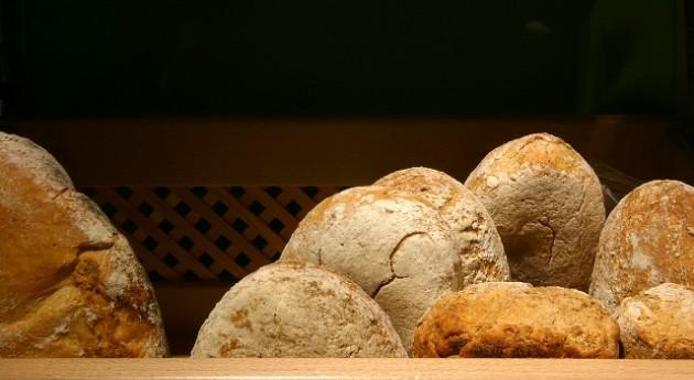 proyecto europeo desarrollará envases plástico biodegradables mediante residuos pan y bollería
